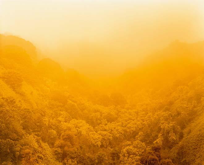 saguaro field tucson az image