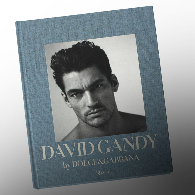 dolce gabbana david gandy book