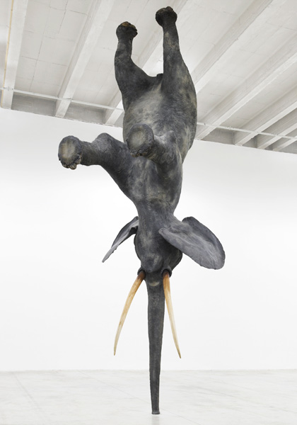 Daniel Firman's gravity-defying elephants