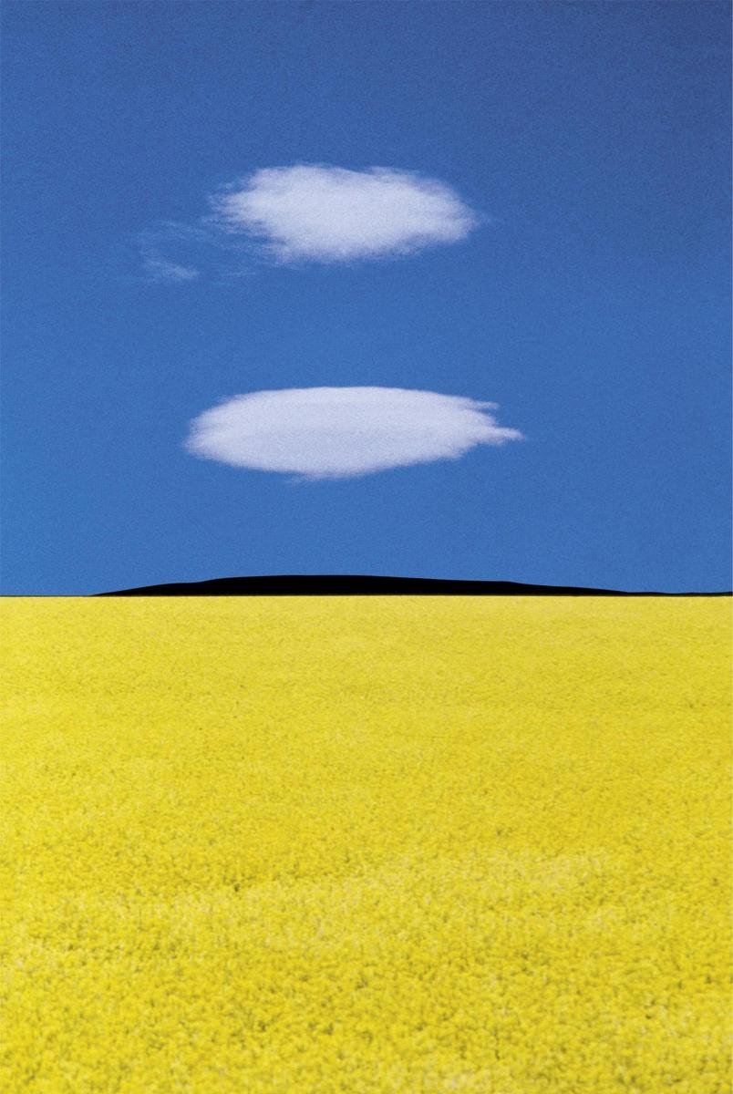 Puglia (1978) © Franco Fontana landscape photography