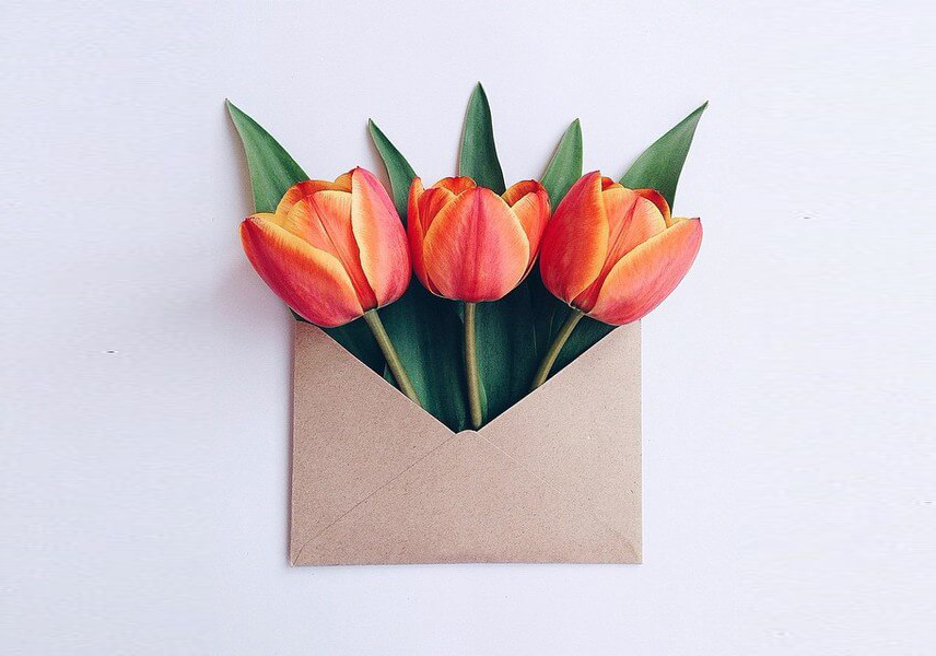 Flowers in vintage envelopes by Anna Remarchuk