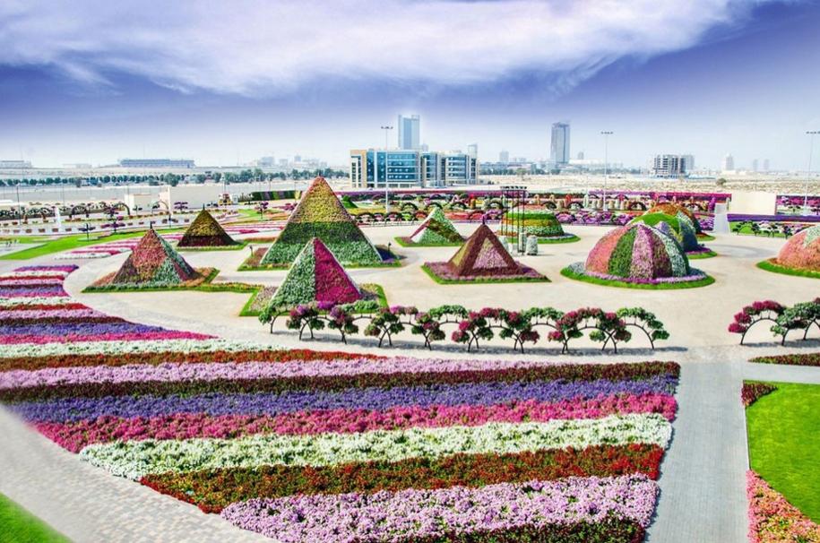 The Dubai Miracle Garden Dubai