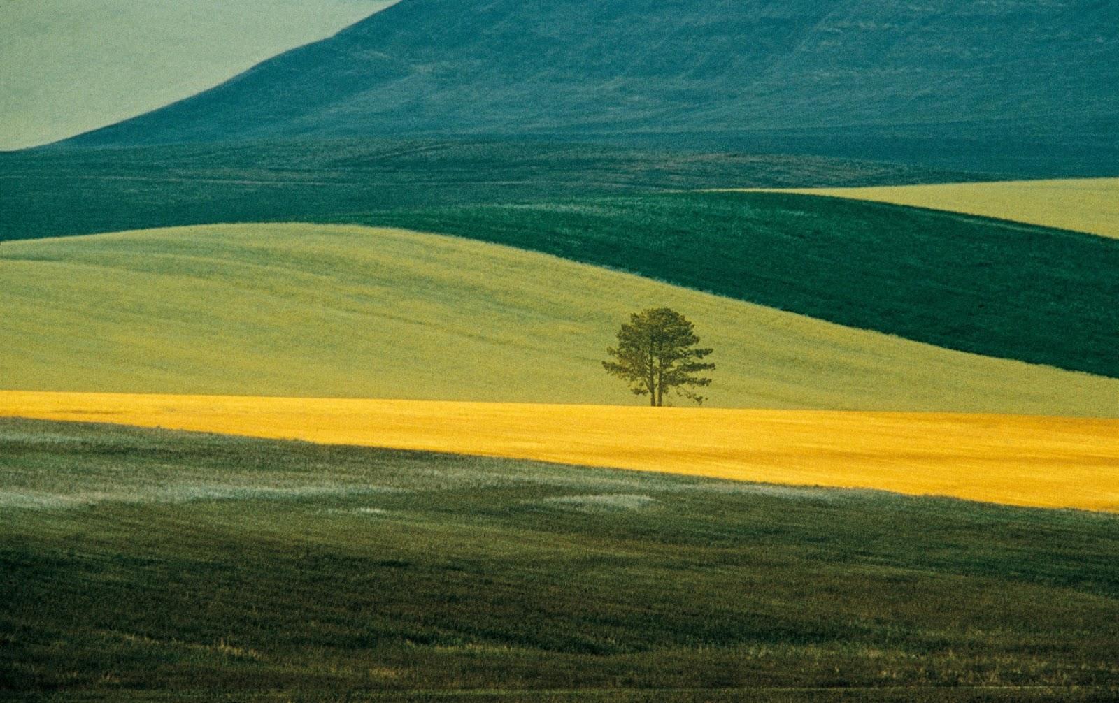 © Franco Fontana landscape photography